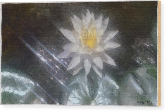 Water Lily In Sunlight Wood Print