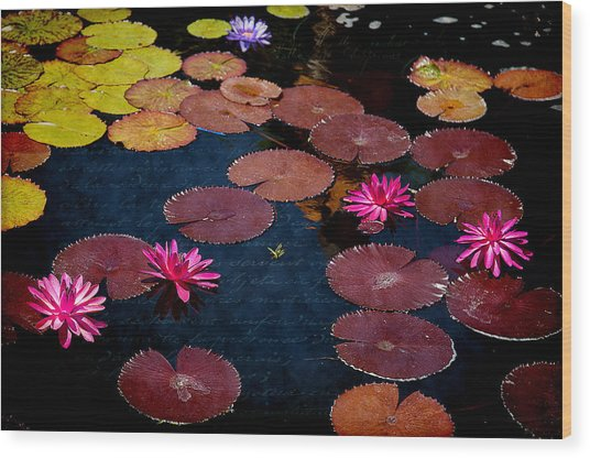 Water Lily World Wood Print