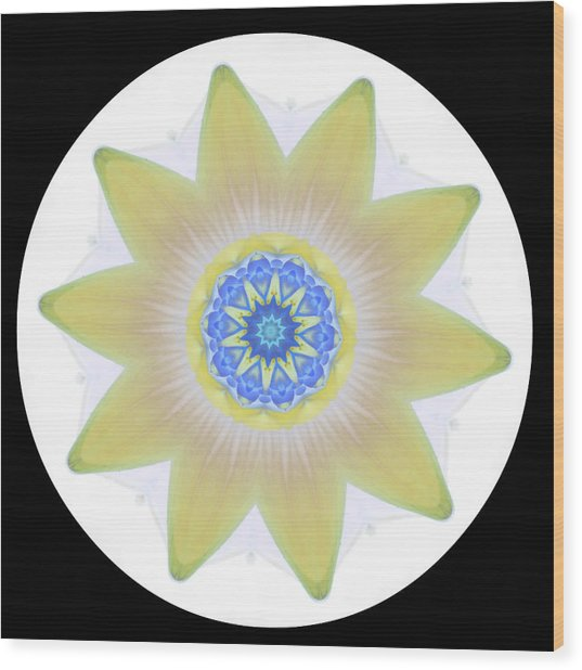 Water Lily Yellow Wood Print