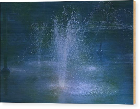 Water Park At Night Wood Print by Brenda Myers