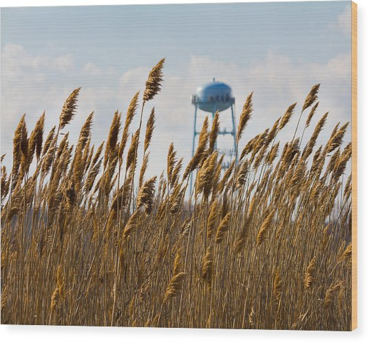 Water Tower Wood Print