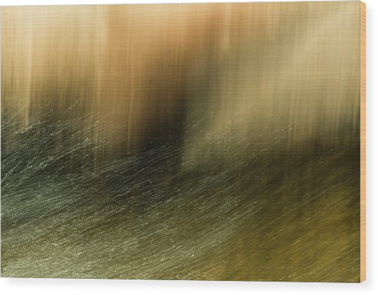 Wood Print featuring the photograph Water Tresses by Deborah Hughes