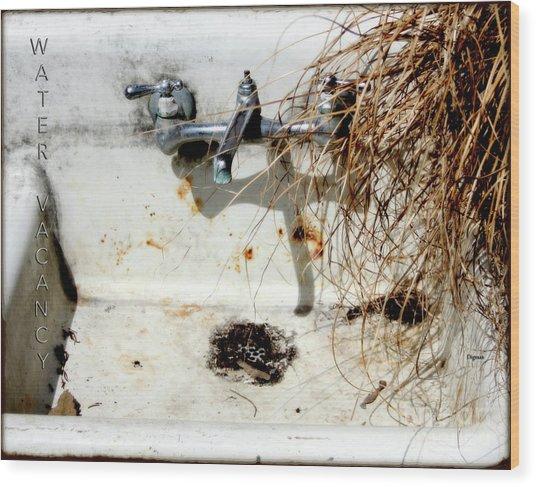 Water Vacancy  Wood Print by Steven Digman