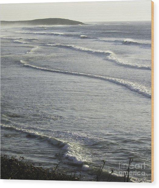 Water World Wood Print