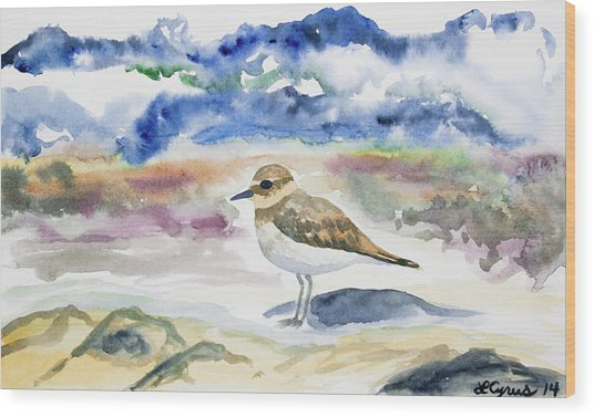 Watercolor - Double-banded Plover On The Beach Wood Print