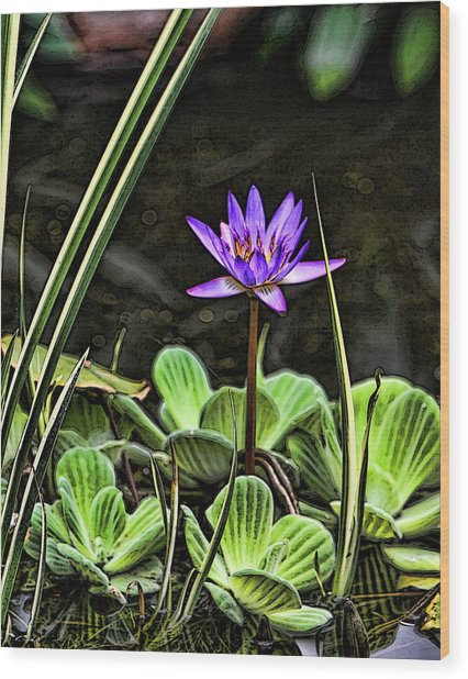 Watercolor Lily Wood Print