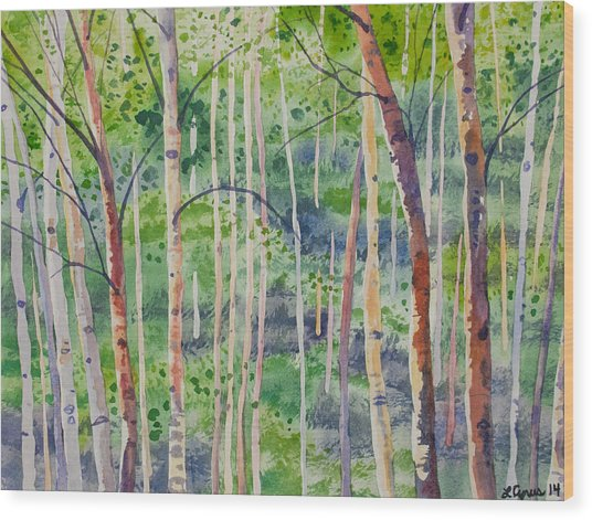 Watercolor - Magical Aspen Forest After A Spring Rain Wood Print