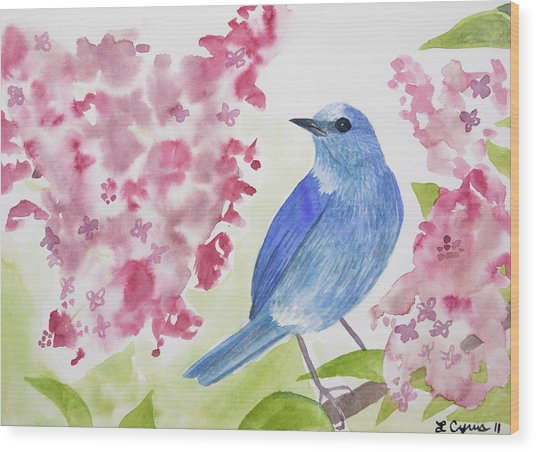 Watercolor - Mountain Bluebird Wood Print