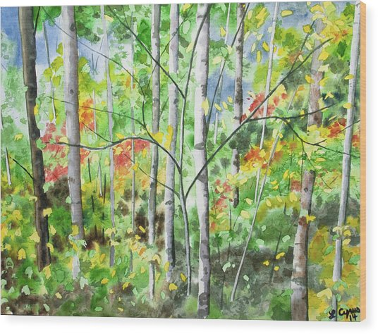Watercolor - Northern Forest Wood Print