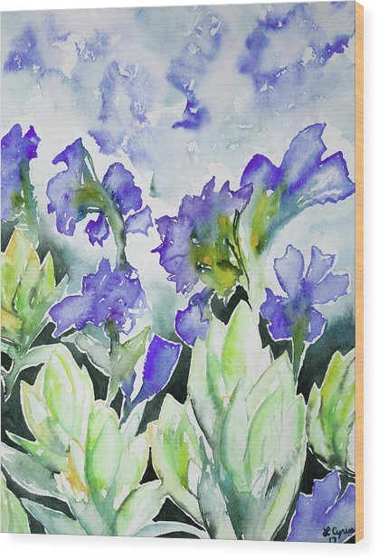 Watercolor - Rocky Mountain Wildflowers Wood Print