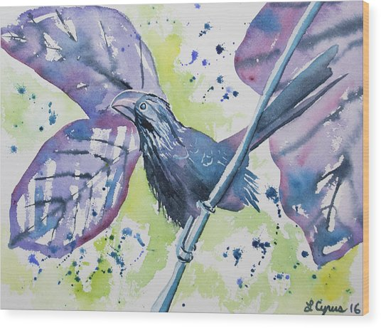 Watercolor - Smooth-billed Ani Wood Print