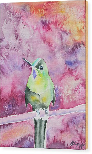 Watercolor - Violet-tailed Sylph Wood Print