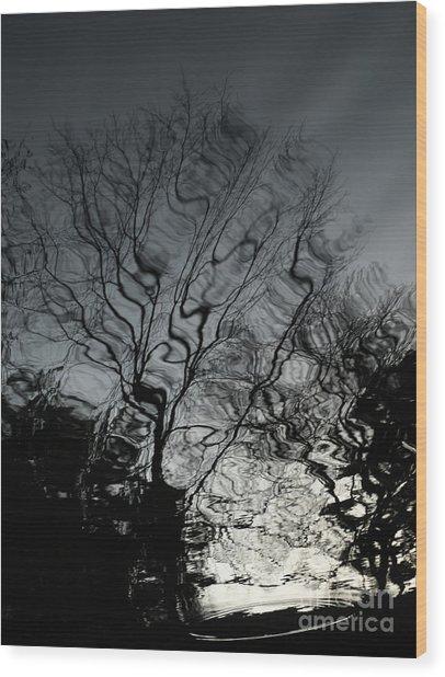 Watereflct4 Wood Print