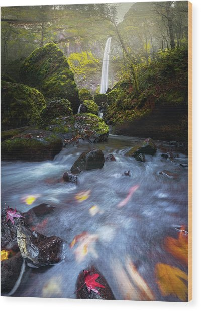 Waterfall And Stream With Fluxing Autumn Leaves Wood Print