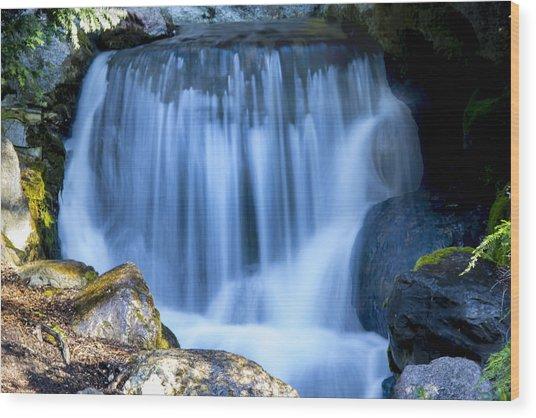 Waterfall At Dow Gardens, Midland Michigan Wood Print