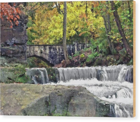 Waterfall At Olmsted Falls - 1 Wood Print