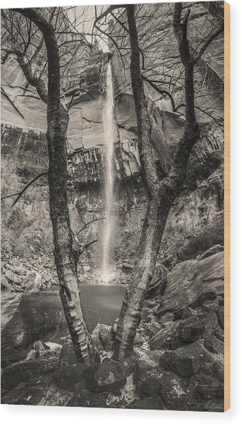 Waterfall At Upper Emerald Pool Wood Print