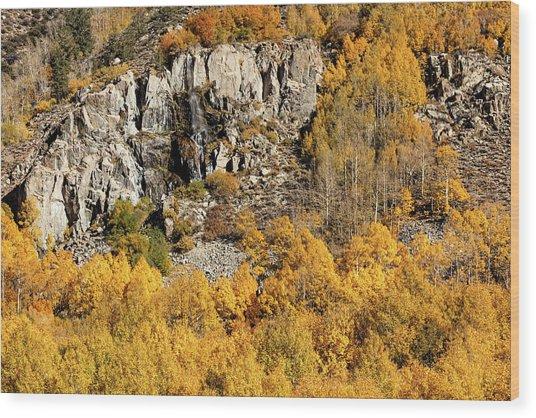 Wood Print featuring the photograph Waterfall, Bishop Creek Canyon by Stuart Gordon