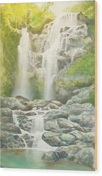 Waterfall Wood Print by Charles Hetenyi