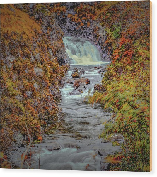 Wood Print featuring the photograph Waterfall #g8 by Leif Sohlman