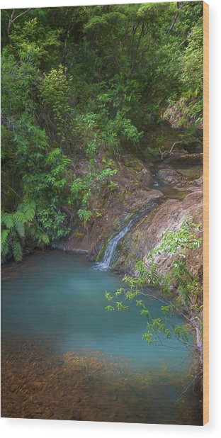 Waterfall Great Barrier Island New Zealand Wood Print