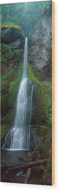 Waterfall In Olympic National Rainforest Wood Print