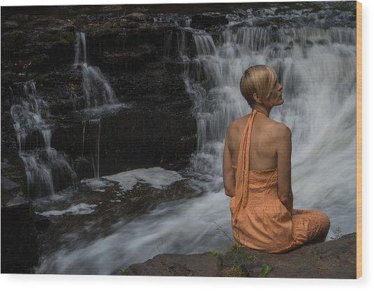 Waterfall Muse Wood Print by Tim Beebe