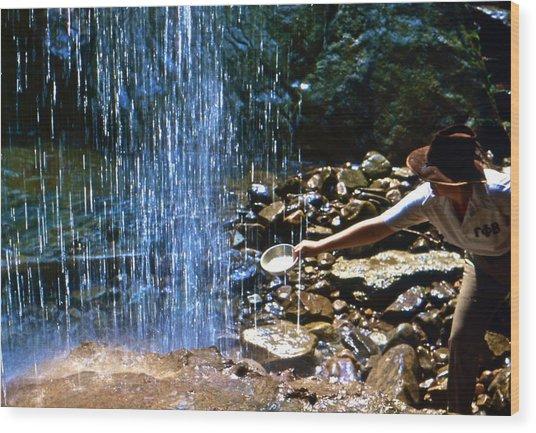 Waterfall Panner Wood Print