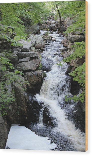 Waterfall Pillsbury State Park Wood Print