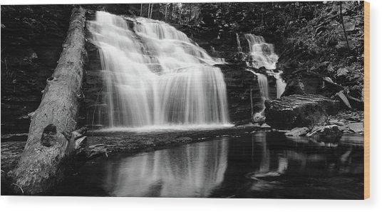 Waterfall Reflection Wood Print