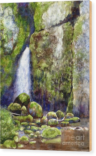 Waterfall With Mossy Rocks Wood Print