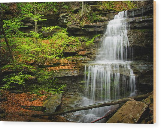 Waterfalls On Little Three Mile Run Wood Print