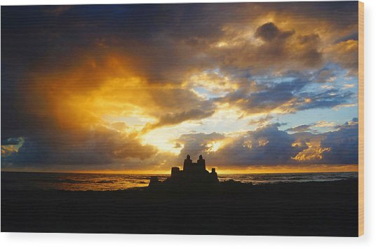 Waterfront Castle Of Your Own Wood Print