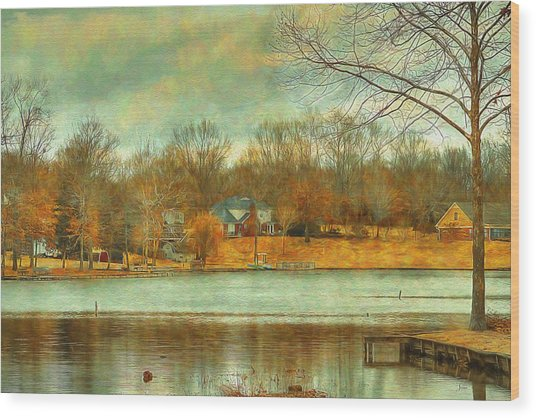 Waterfront Property - Lake Landscape Wood Print by Barry Jones