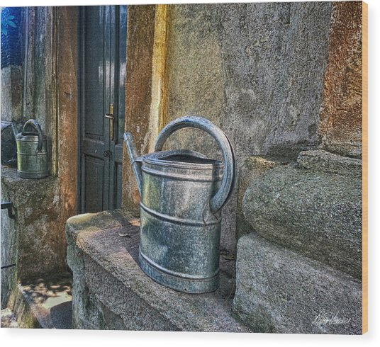Watering Cans Wood Print