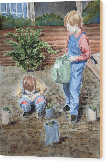 Watering The Plants Wood Print by John Cox