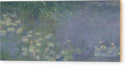 Waterlilies Morning Wood Print