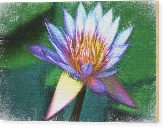 Waterlily Sketch Wood Print