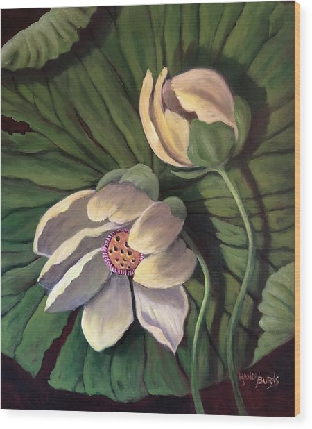 Waterlily Like A Clock Wood Print