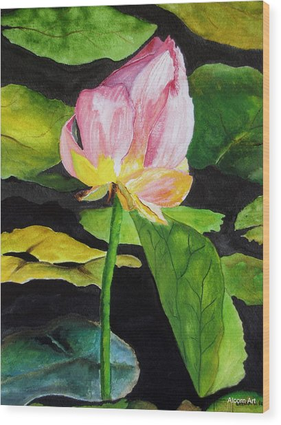 Waterlily Watercolor Wood Print by Brenda Alcorn