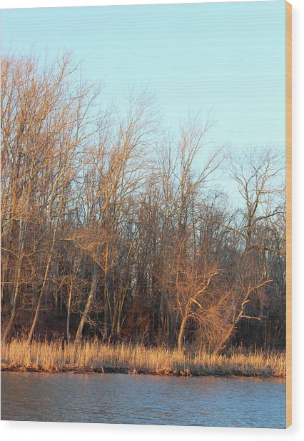 Waters Edge 2 Wood Print