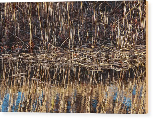 Water's Edge Reflection Wood Print