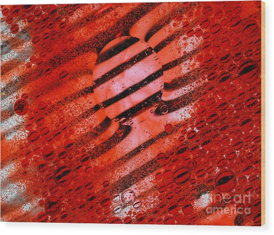 Waterscape Crystal Red  Wood Print