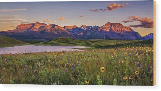 Waterton Lakes Sunset Wood Print by Tracy Munson