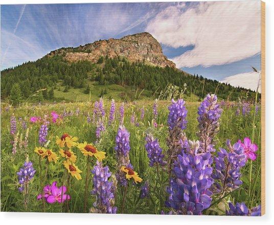 Waterton Wildflowers Wood Print
