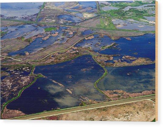 Waterways 2 Wood Print by Sylvan Adams