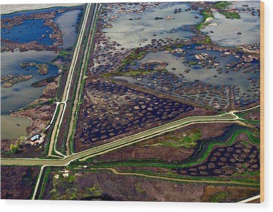 Waterways9 Wood Print by Sylvan Adams