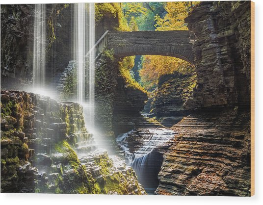 Watkins Glen State Park Wood Print