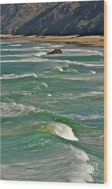 Wave Action Wood Print
