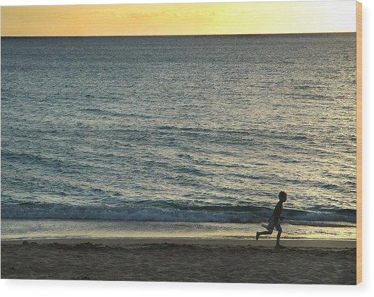 Wave Runner Wood Print by Dan Holm